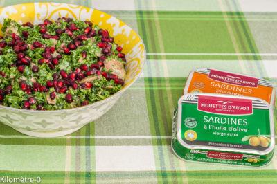 Photo de recette de salade, healthy, rapide, facile, super aliment, sardines, chou kale, grenade, saine, bio, Kilomètre-0, blog de cuisine réalisée à partir de produits de saison et issus de circuits courts